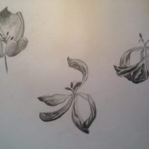 Drawing by a 16 years old child