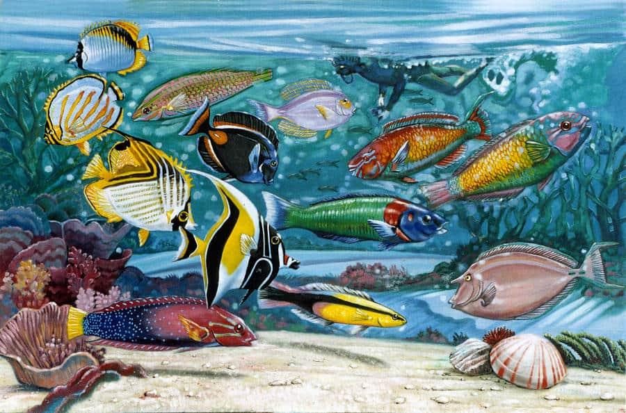 ocean-fish-john-lautermilch