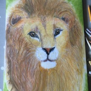 Lion drawing by a 9 years old child