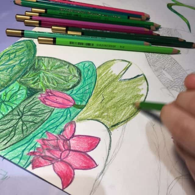 Watercolours pencils and lilies drawing by Arty Amber