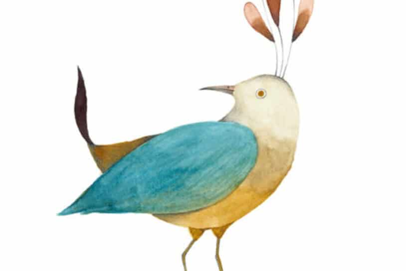 Bird exhibition_ Ester Garcia 3 1